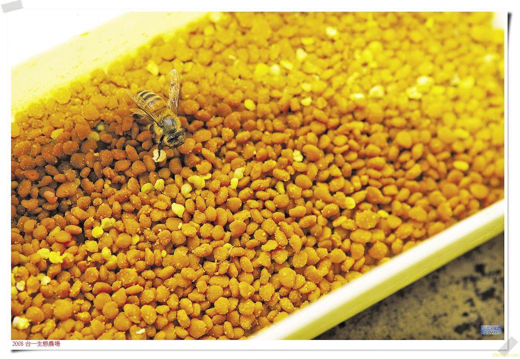 polen de albine și erecție)
